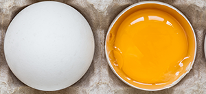 omega-3 eggs and yolk