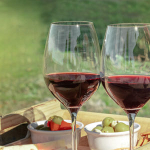 picnic with two glasses of red wine